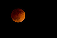 Blood Moon 4/15/2014